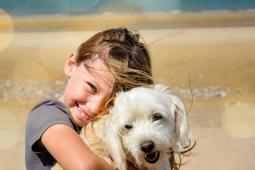 how to help your kids learn to love dogs